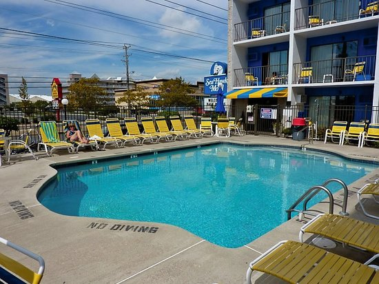 Sea Hawk Motel: Love this Pool !!