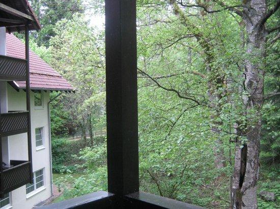 Relexa Hotel Harz-Wald: Aussicht vom Balkon
