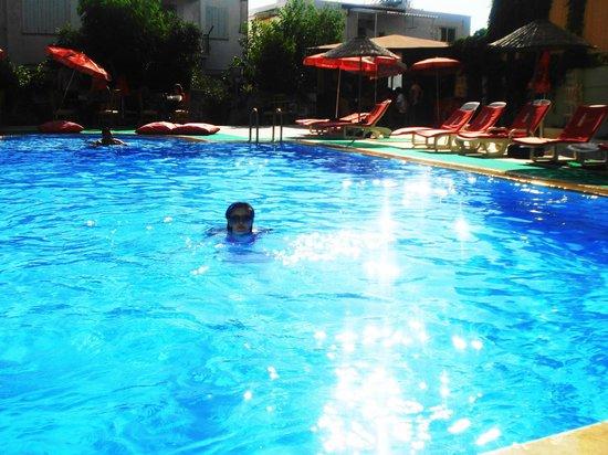 Hotel Albora: pool