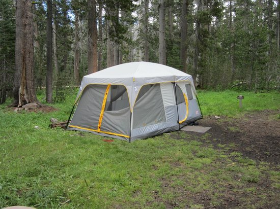 White Wolf Campground : Our SMALL tent :)