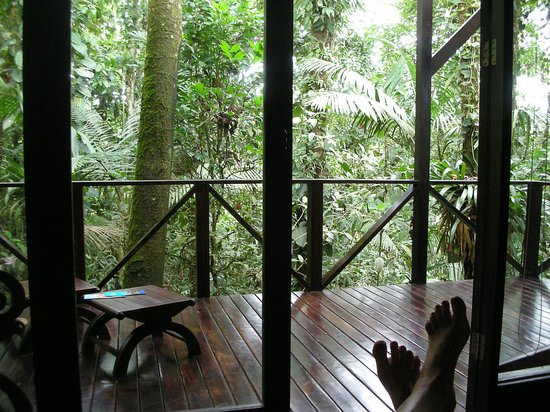 Rio Celeste Hideaway Hotel: THE VIEW FROM OUR DECK