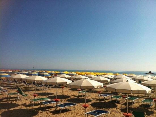 Hotel Venezia : Spiaggia Hotel