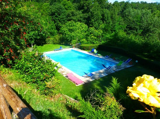 Agriturismo Il Borgo nelle Querce: la piscina