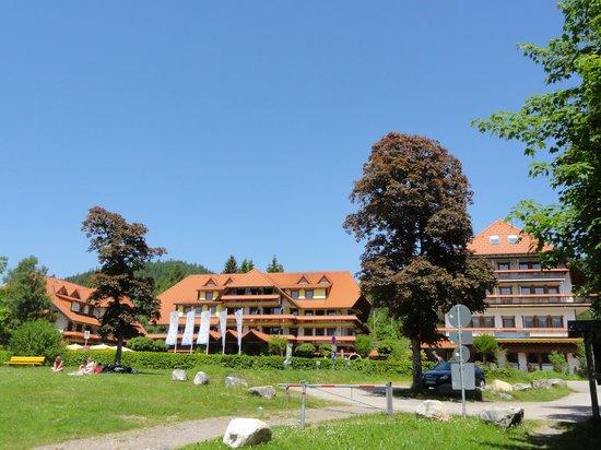 Wellnesshotel Auerhahn: vue de l'hotel