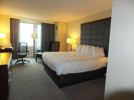 Hilton Philadelphia at Penn's Landing: Hyatt Room View #1