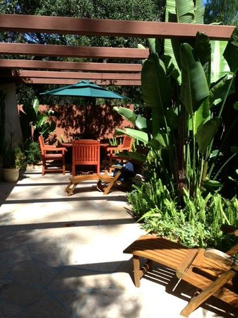 Emerald Iguana Inn: Private patio - Acorn Suite