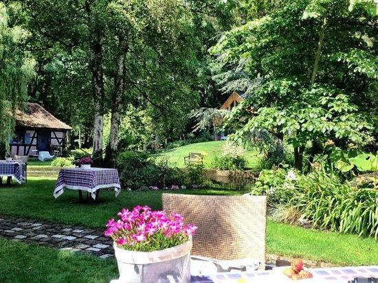 Hotel Le Moulin : Blick in den Garten