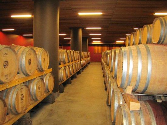 Locanda Gulfi: The wine cellar.