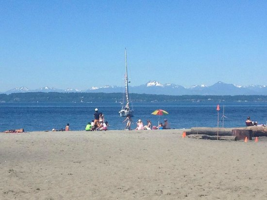 Golden Gardens Park: Not a cloud in the sky