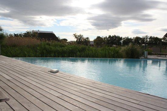 Hotel Les Arnelles : piscine a débordement avec vue chevaux et roseaux