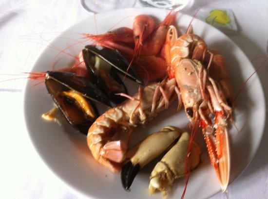 Fiskekrogen : skaldjur