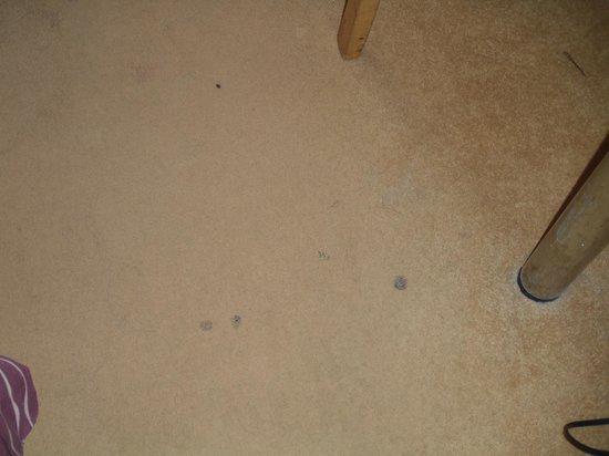 Leisure Inn: Cigarette burns in carpet