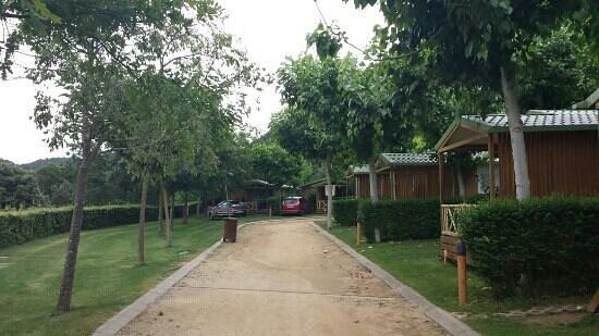 Bassegoda Park: Avenida
