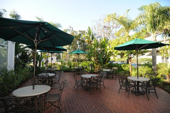 hilton garden inn laxel segundo - Hilton Garden Inn El Segundo