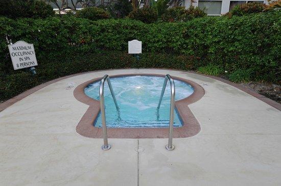 Hilton Garden Inn LAX/El Segundo: The Whirlpool