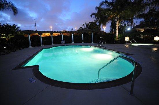 Hilton Garden Inn LAX/El Segundo: The Pool