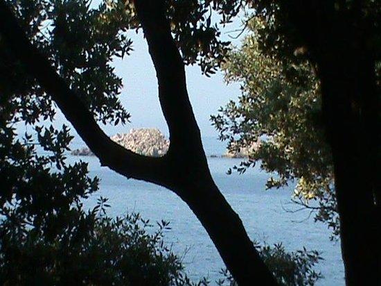 Importanne Resort Dubrovnik : Paseo hacia zona comercial