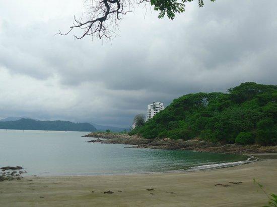 Punta Culebra Nature Center: Playa de Cangrejos