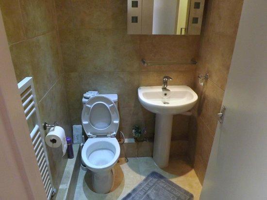 Avis Hotel: bathroom