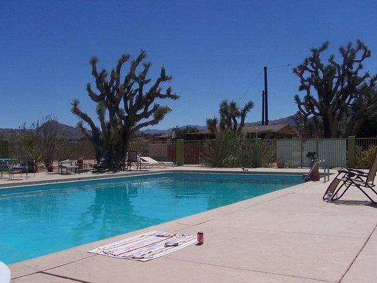 Joshua Tree Inn: refreshing pool