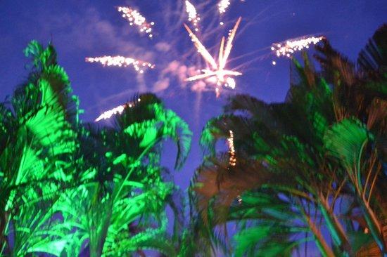 Hotel Delfin Playa Bejuco: Garden
