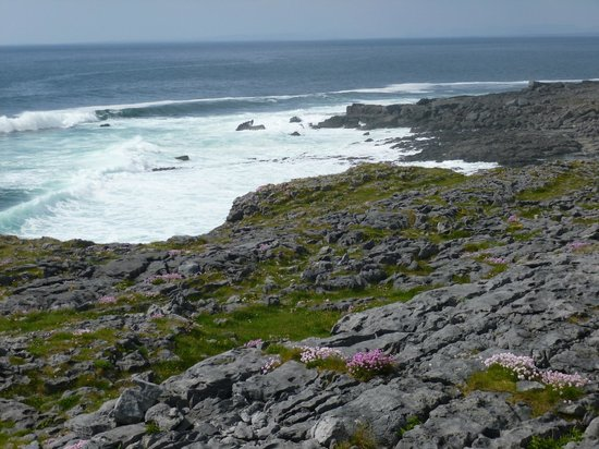 Nellie Dees: The Burren and coast line north of Doolin