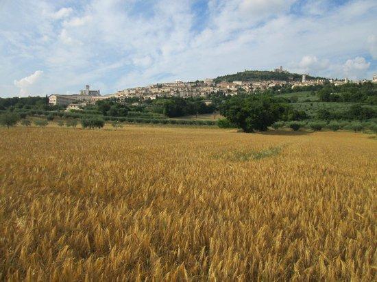 Terra Dei Santi Country House: percorso in bici
