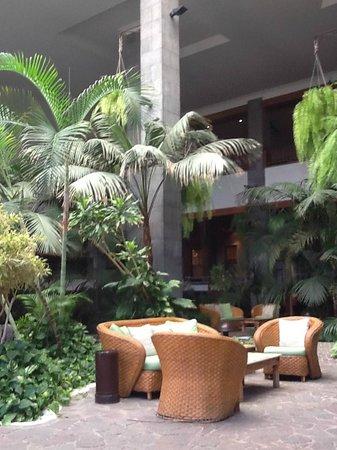 Princesa Yaiza Suite Hotel Resort: Plantas tropicales, agua, peces...increíble.