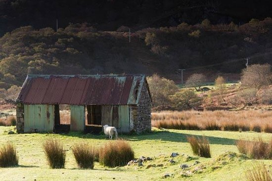 Colonsay B&B: Part of view from room