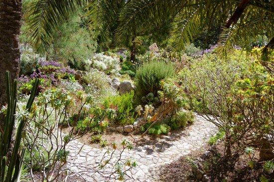 Jardín Botánico de Soller: General view
