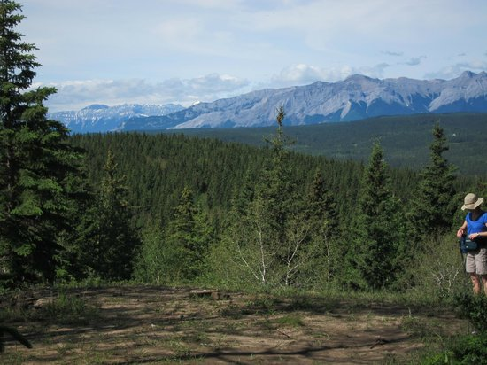 "Hinton Bike Park: The view from the lookout, ""J"" trail"