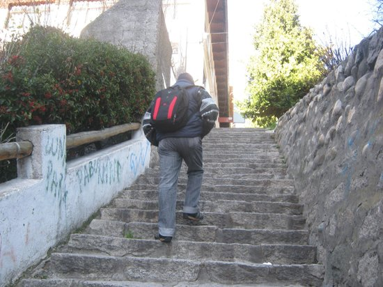 Hostería Nogare: Escaleras de la ciudad, cansadoras pero disfrutables.