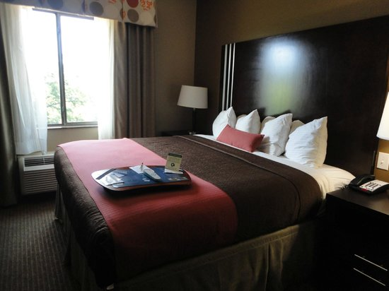 BEST WESTERN PLUS Texoma Hotel & Suites: King Bed