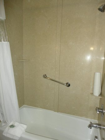 BEST WESTERN PLUS Texoma Hotel & Suites: Bathroom