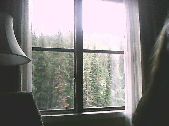 Sun Peaks Lodge: view