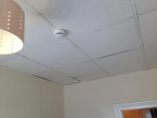 Lansdowne: dirty ceiling