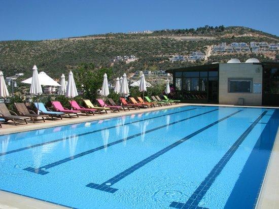 Happy Hotel Kalkan: 30M of swimming bliss