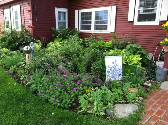 The Colonial House Inn & Motel: One of the Gardens