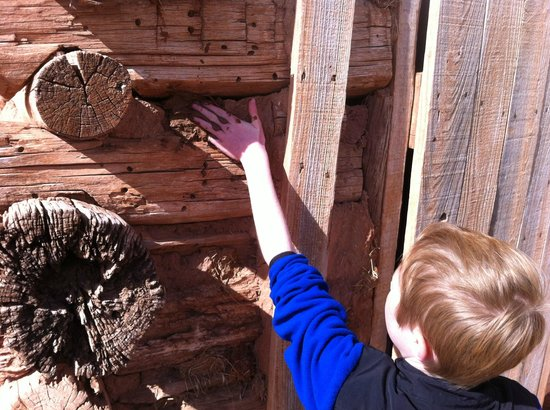 National Ranching Heritage Center : Adding some insulation between the logs during Ranch Days