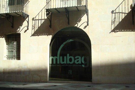 Museo de Bellas Artes Gravina (MUBAG): MUBAG exterior