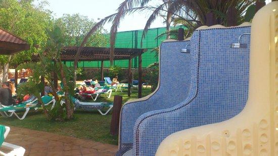 Jardines y duchas piscina - Picture of IFA Interclub Atlantic Hotel ...