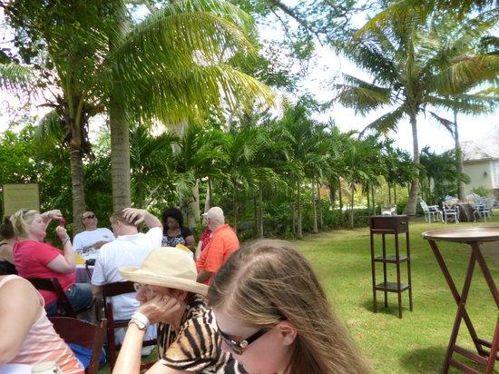 Good Hope Plantation: Backyard where Tea was held