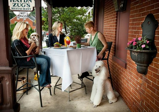 Haydn Zug's: Pooch Patio - enjoy outdoor dining with your dog