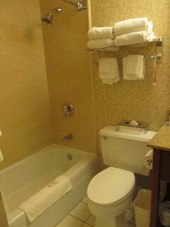 Holiday Inn Ellswort : Nice and clean