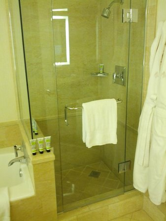 Four Seasons Hotel Las Vegas: Shower