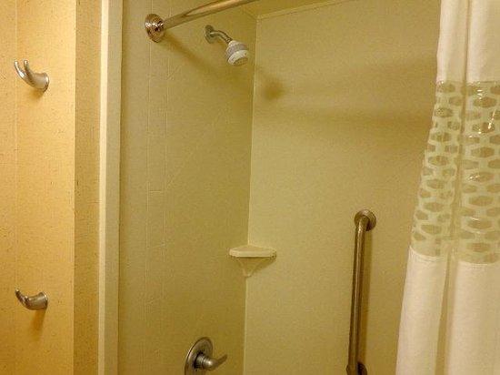 Hampton Inn and Suites Riverton: Shower with convenient features