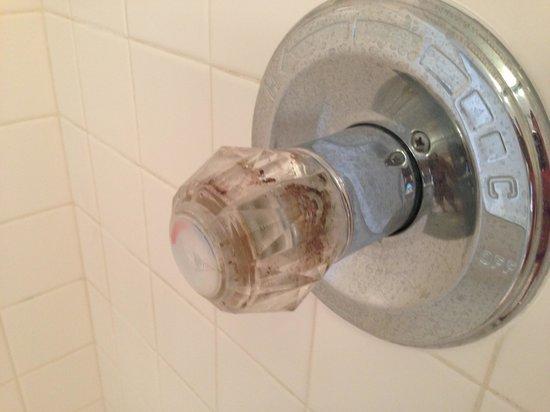 Jade East Towers : Disgusting Faucet in Master Bath