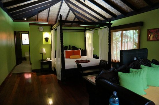 Rio Celeste Hideaway Hotel: view of the room