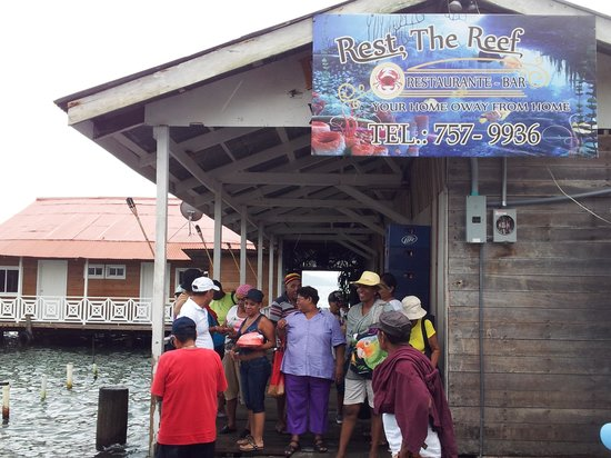 The Reef: Compañeros de viaje