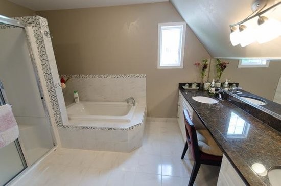 Wild Rose Bed & Breakfast: Shower, Bath and Vanity